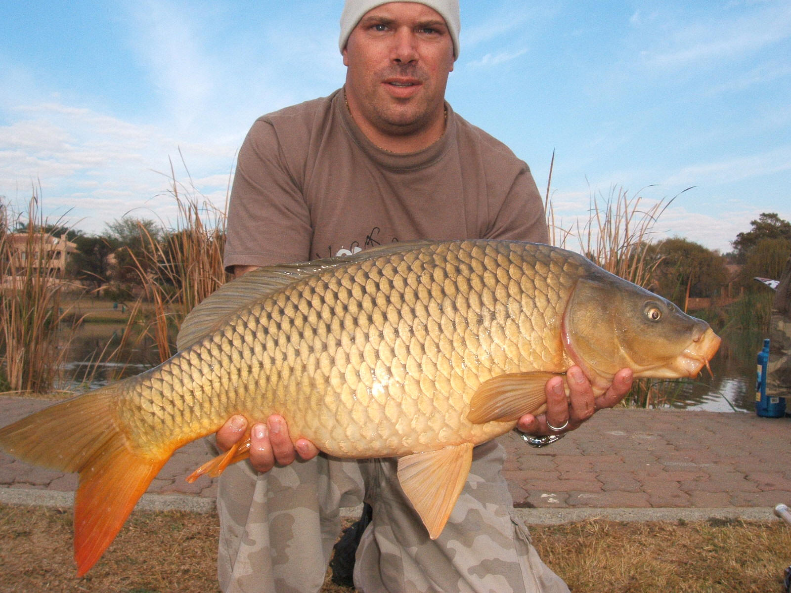 conventional carp angling tips and information catching