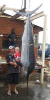 South African Black Marlin 114kgs