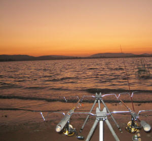 South African Freshwater Fishing Venues