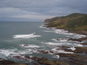 Brazenhead in the Transkei
