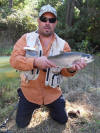 2kg Spawning Rainbow Trout - Hen