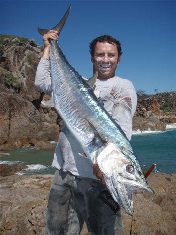 Photos Amp Images Of South Africa S King Mackerel Couta