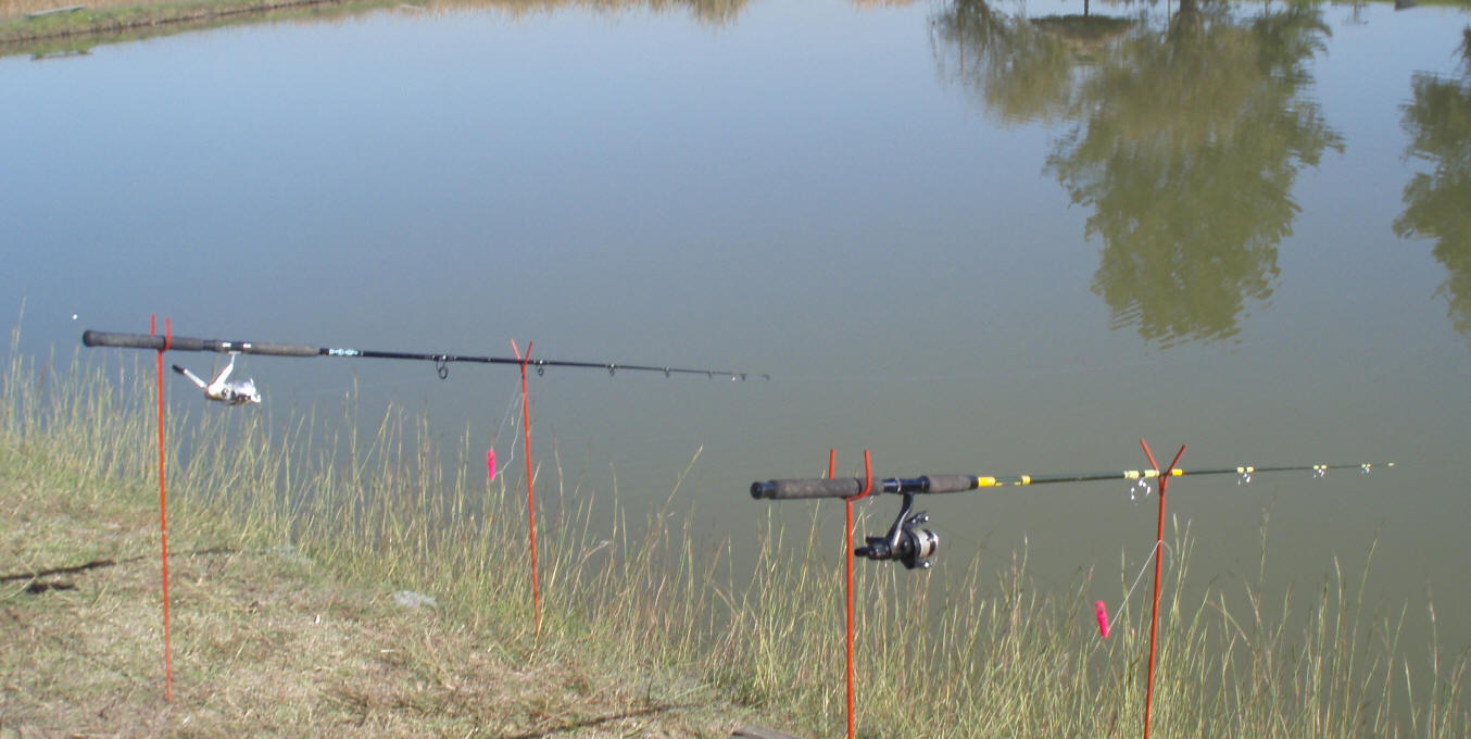 conventional carp angling tips and information catching carp, Fishing Reels